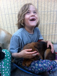 sf dog connect child with dog