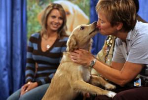 sf dog trainer kiss